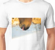 Horse Licks On Snow with Cute Paso Fino Horse Unisex T-Shirt