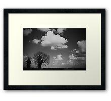 Monochrome Fen Framed Print