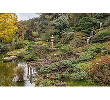 Hakone Gardens Photographic Print