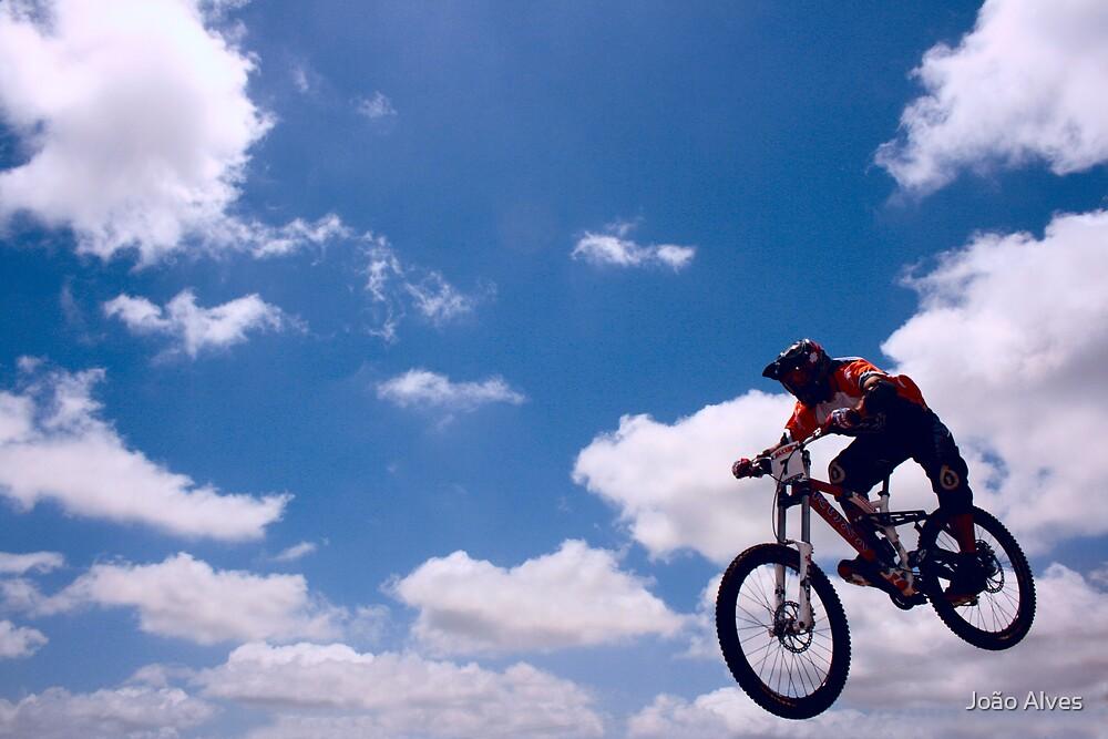 Fly by João Alves