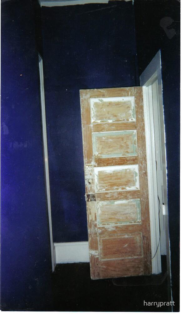 The Bathroom Door   by harrypratt