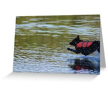 Diving In! Greeting Card