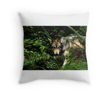 Forest Wolf (Canis lupus) Throw Pillow