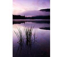 Twilight Glow Photographic Print