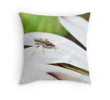 Am I bugging You? Throw Pillow