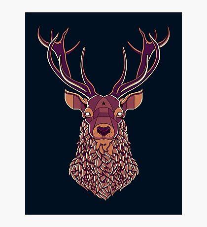 The Night Deer Photographic Print