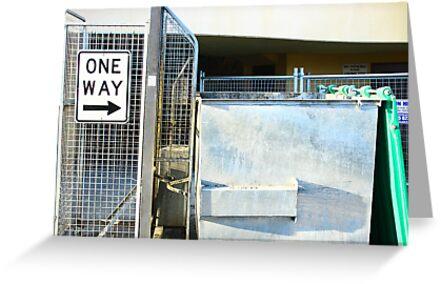 One Way -> To The Bin. by Ori Kaydar