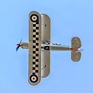 Hawker Fury I K5674 G-CBZP over the top by Colin Smedley