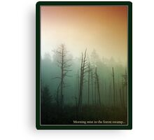 Morning mist in the forest  Canvas Print