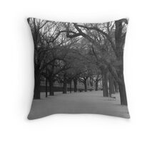 Yarra River Banks Melbourne Throw Pillow