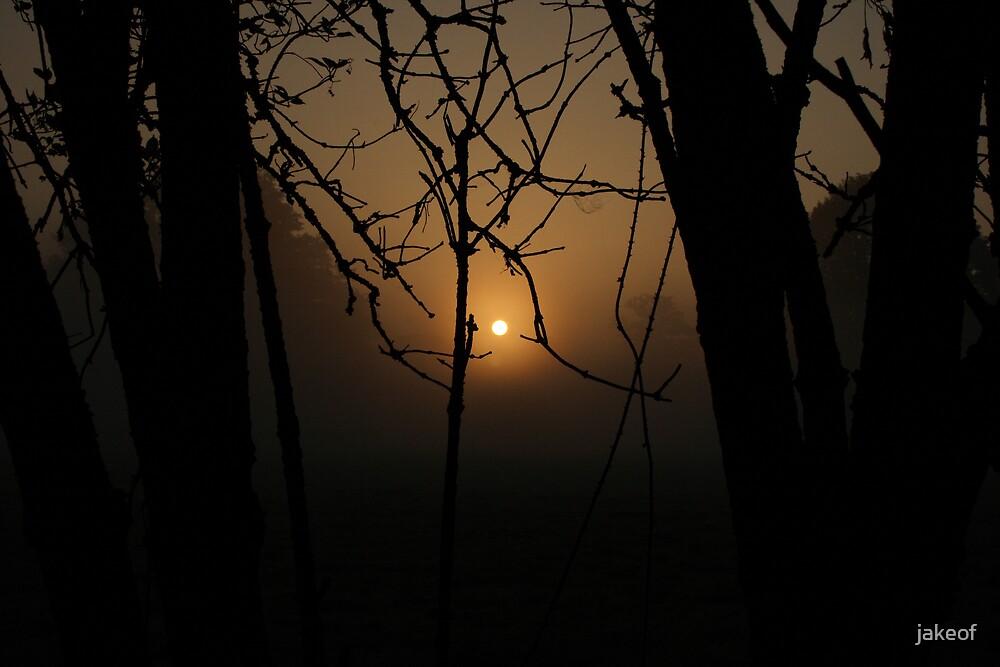 Misty Morning Glow by jakeof