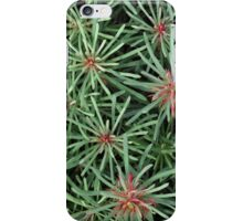 Starburst iPhone Case/Skin