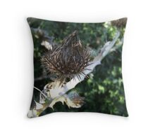 thistle focussed Throw Pillow