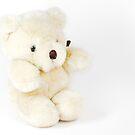 Teddy Bear by Claudia Reitmeier