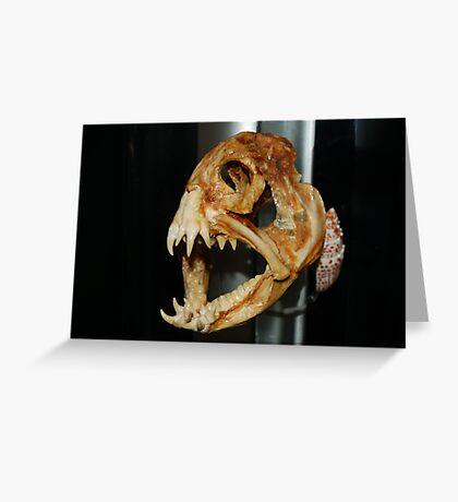 Jaws!! Greeting Card