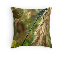 Common Blue Damsel Fly Throw Pillow