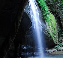 Buderim Waterfalls Sunshine Coast Qld Australia by Beth  Wode
