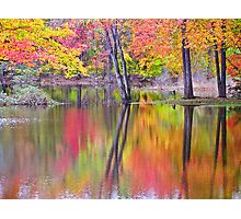 Afternoon Reflections (2)  ! Photographic Print