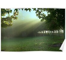 Early rays . . . Poster