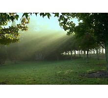 Early rays . . . Photographic Print