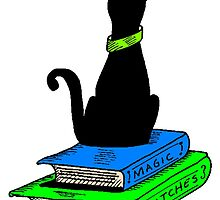 Cat On Books by kwg2200