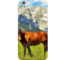 Horse in the Alps iPhone Case/Skin