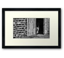 Security Framed Print