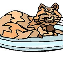Cat On Plate by kwg2200