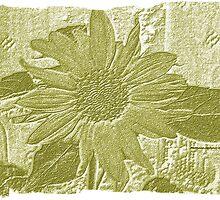 Sunflower Lace by Pattiann Malynn