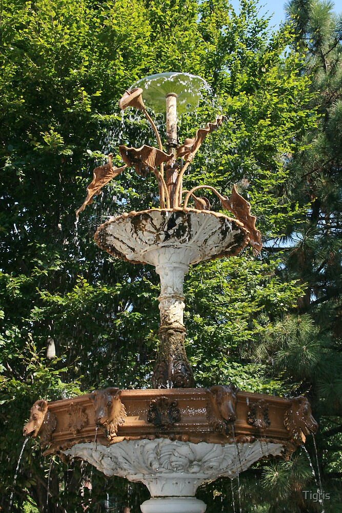 Forgotten fountain by Tigris