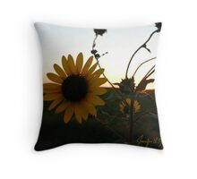 Farewell Sun Throw Pillow