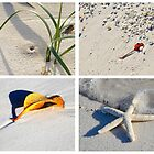 Fraser Sands by shuttersuze75
