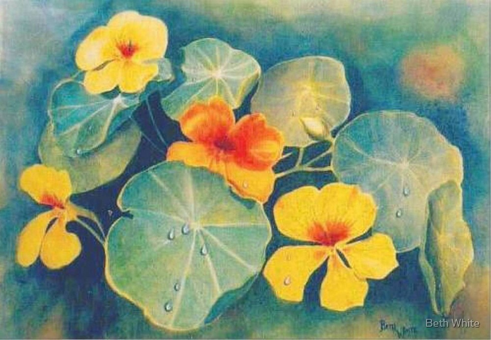 """Nasturtiums on Silk"" by Beth White"