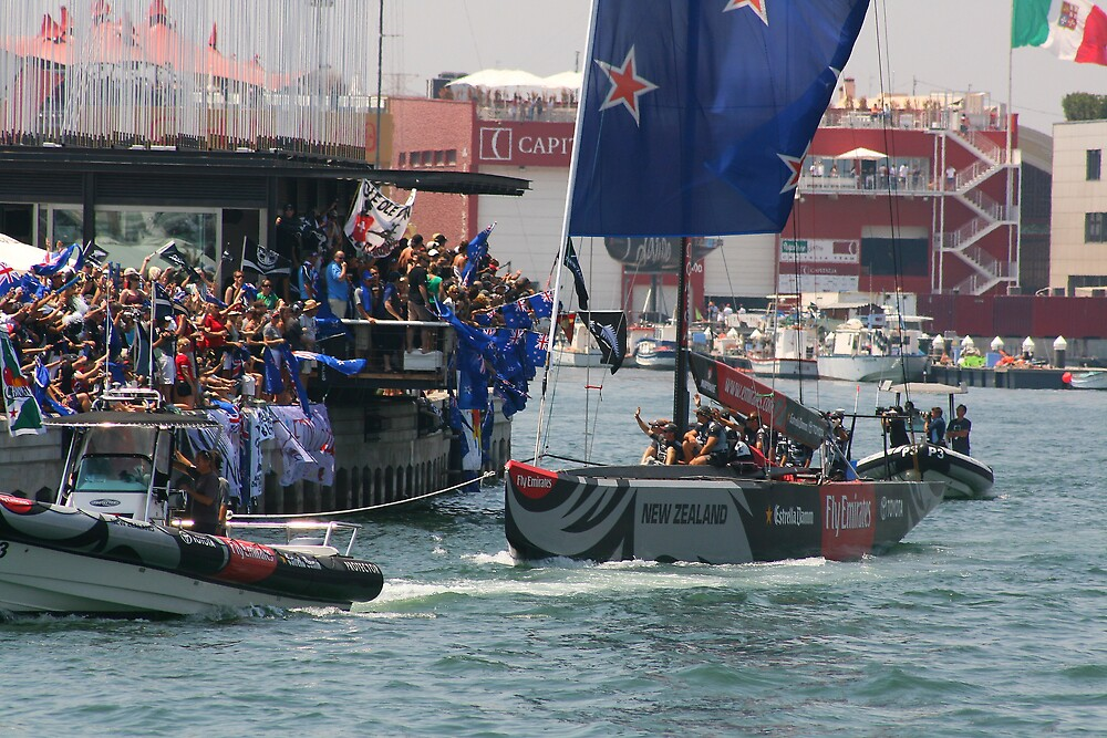 america's cup kiwis  by x07wave