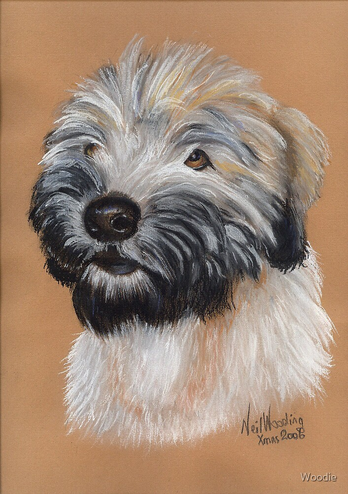 Barney in pastel by Woodie