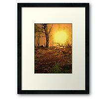 THE LONG AWAITED Framed Print
