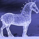 Horse In The Night by Alan Findlater
