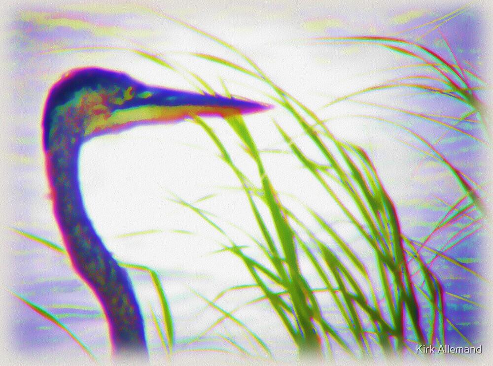 Heron Dream by Kirk Allemand