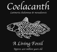 Coelacanth Living Fossil by Samuel Sheats