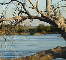 Zambezi River by DanielleR