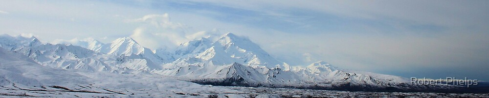 Mount McKinley's surrounding area by Robert Phelps