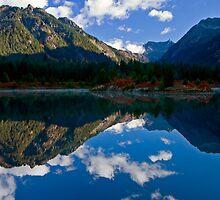 Morning Mirror by DawsonImages