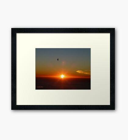 San Francisco Sunset 1415 Framed Print