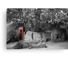 Old Red..... Canvas Print