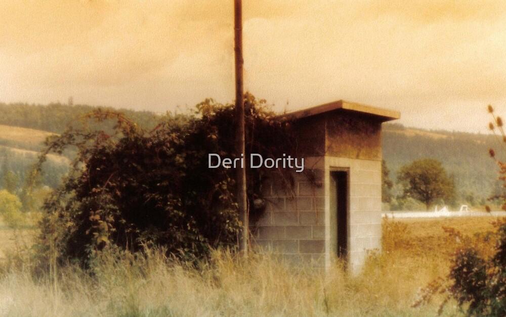 Times gone by. by Deri Dority