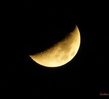 San Francisco Moon 1420 by EndlessSkies