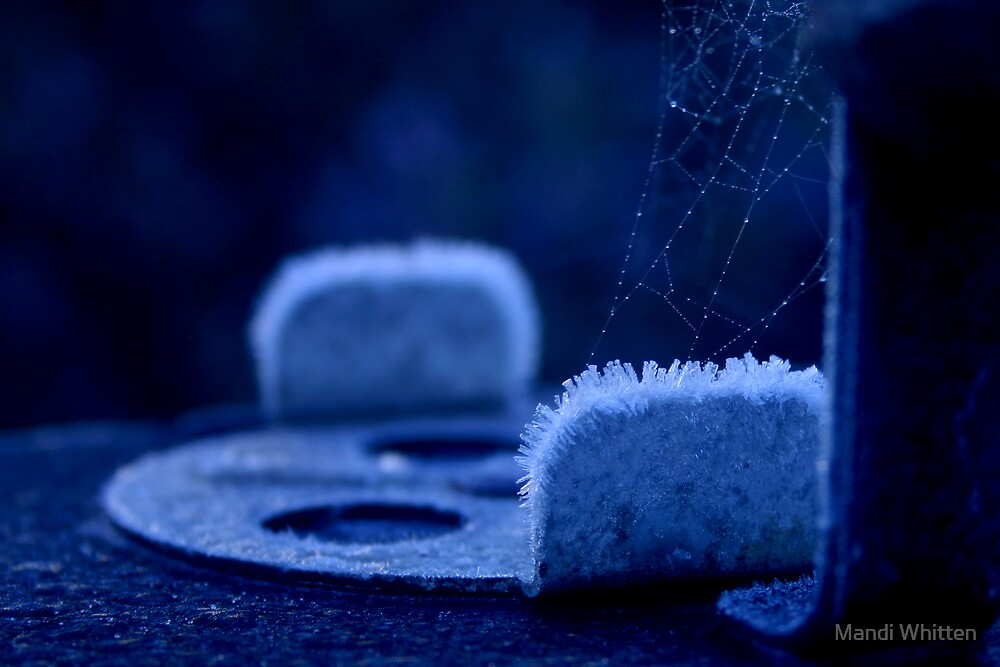 BBQ frost by Mandi Whitten