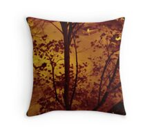 Night shot aged in photoshop Throw Pillow