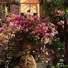 doorway with bougainvillea - entrada con bouganvilla by Bernhard Matejka