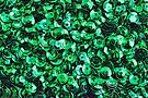 Green Scattered Sequins by Avril Harris